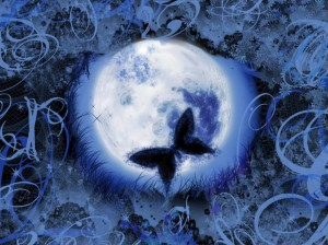 butterfly-with-blue-moon-dream